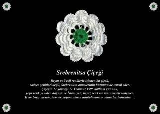 srebrenitsa-katliaminin-23nci-yildonumu