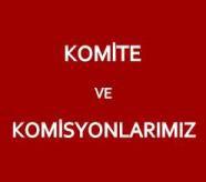 mazlumder-istanbul-subesi-komite-ve-komisyon-